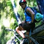 Biking N. Umpqua