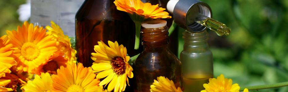 Medical Calendula - Eclectic Medicine