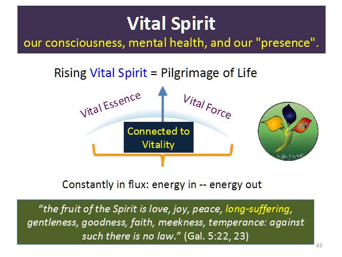 Vital Spirit 2