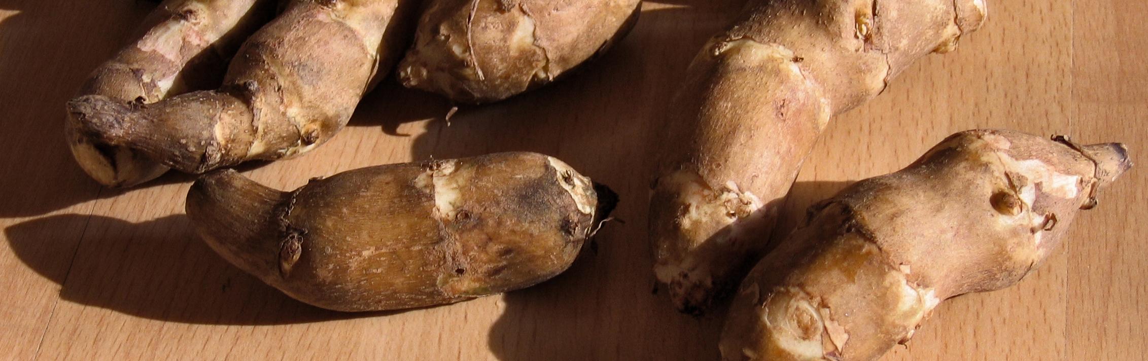 organic-jerusalem-artichoke-1318950